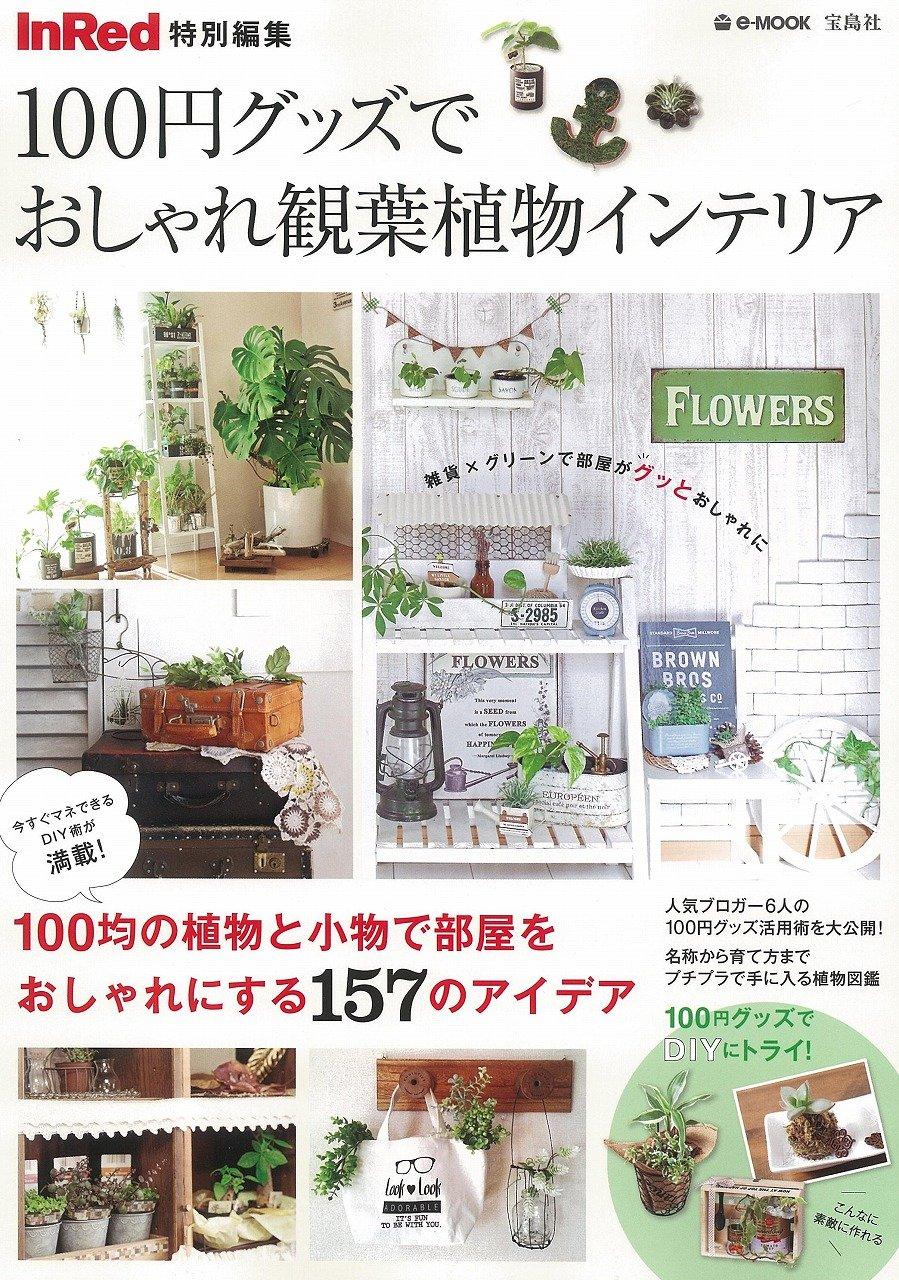InRed特別編集100円グッズでおしゃれ観葉植物インテリア